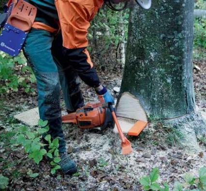 V některých případech profesionální dřevorubci používají při práci speciální nástroje. Na obrázku vidíte dřevorubecký klín, dřevař ho zatlouká do spáry pomocí přetlačné lopatky.