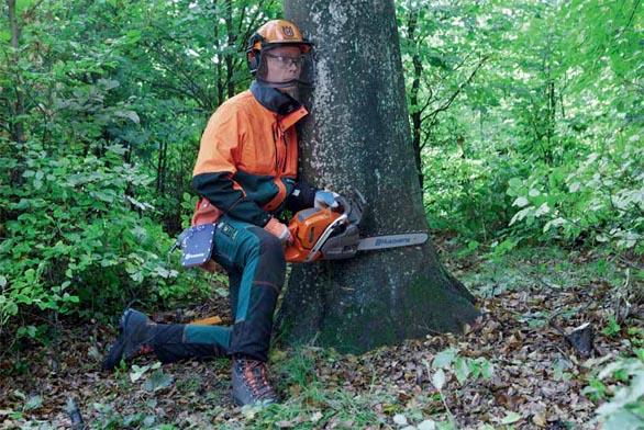 Dvakrát měř, jednou řež – nejprve je třeba přesně zaměřit, jakým směrem pokácený strom dopadne.