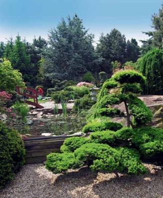 V prostoru, kde se nachází jezírko s mostkem, lze posedět, těšit se vodními prvky a sledovat osobité kouzlo zahrady, která se zjara probouzí společně s vonícími sakurami, kdy rozkvétá barevný azalkový vrch…