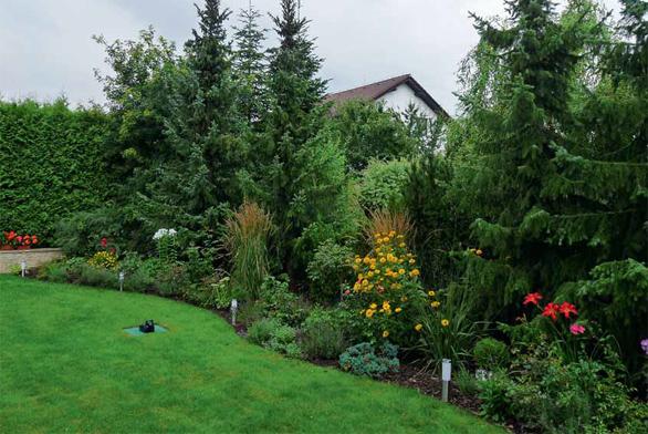 Okraj vyšších stromů je vhodné osadit pestrou směsí trvalek, okrasných trav a růží.