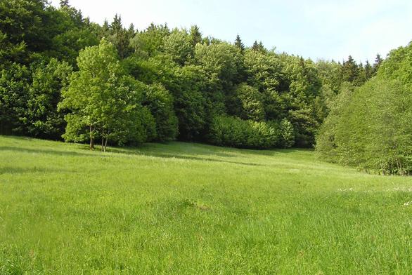 Zahrada nad velkým svahem (ilustrační fotografie)