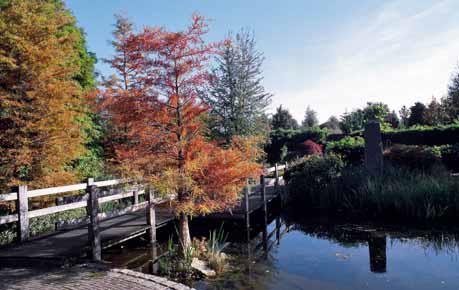 Systémy lávek a mostů u větších zahrad musejí dávat záruku, že se po čase nesetkáme se statickými poruchami, nebudeme řešit trvanlivost mostovky a bojovat s dřevokaznými houbami. Důležitá je bezpečnost a trvalý estetický dojem, který koresponduje s typem zahrady.