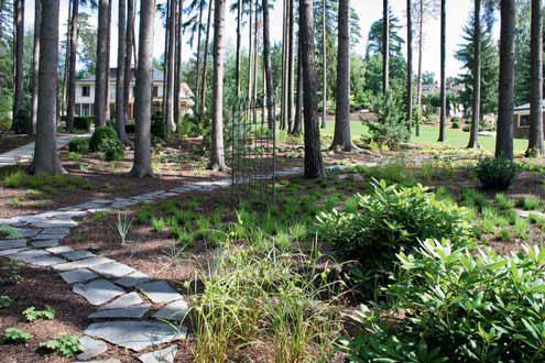 Lesem vedou zvlněné šlapákové cesty z přírodního kamene a s využitím podrostu, který se postupně během let rozroste a spojí.