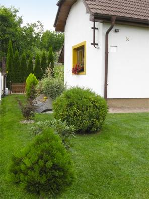 Rostliny volili majitelé vzávislosti nadruhu zeminy acelkových podmínkách. Vzhledem kvelikosti zahrady preferovali spíše stromy akeře nižšího vzrůstu, aby prostor zůstal vzdušný.