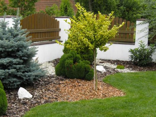 Kolem dřevin vysazených uplotu je půda vysypaná kamínky amulčovací kůrou, které vytvářejí poobvodu zahrady lem vodstínech hnědé abílé.
