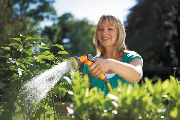 Postřikovače mají pro zahradu velký význam. Vybíráme podle účelu amnožství rostlinného materiálu (MOUNTFIELD).
