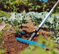 Hrábě nestárnou. Přes všechnu techniku zůstávají inadále vevýbavě zahradníků.