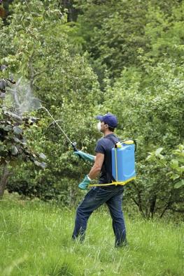 Vybíráme zcelé řady postřikovačů avolíme speciální přípravky vhodné pro naši zahradu. Univerzální je například Oleoekol, který se dávkuje poměrem sto mililitrů nadeset litrů vody.