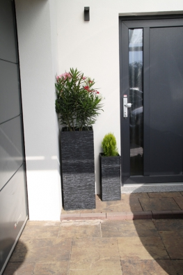 Stavební aprojekční společnost MS Haus, s.r.o. se specializuje nadřevostavby slehkou rámovou konstrukcí sdifuzně uzavřeným systémem stěnových panelů.