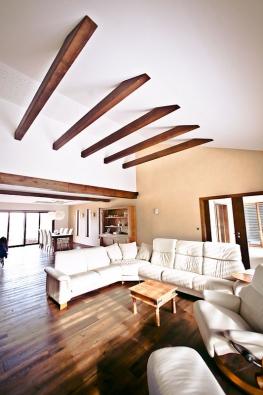 Nabídka firmy obsahuje stovku základních typů rodinných domů, které mají netradiční vzhled a komfort. Nejedná se o panelový systém, ale o montáž zjednotlivých komponentů na místě stavby.
