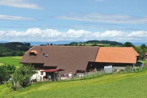 Elektrárna na střeše, či ve střeše?
