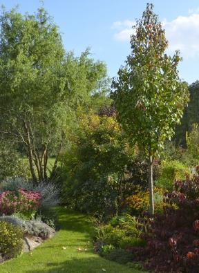 Travnatá cestička vedoucí do zadní části zahrady.