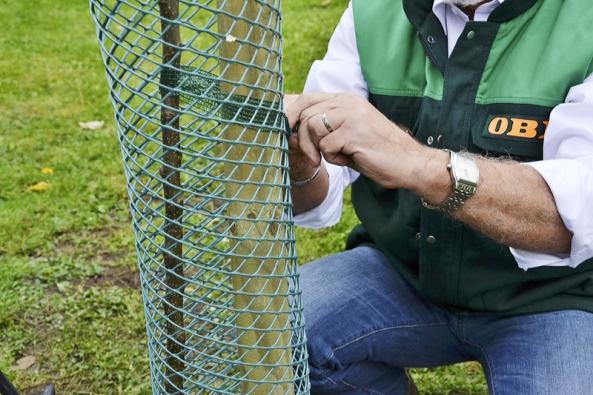 Pokud máme zahradu nebo pozemek někde blízko ulesa nebo vevolné krajině, měli bychom důkladně zkontrolovat stav oplocení. Stačí jediná skulinka azajíci natropí naovocných dřevinách nenapravitelné škody.