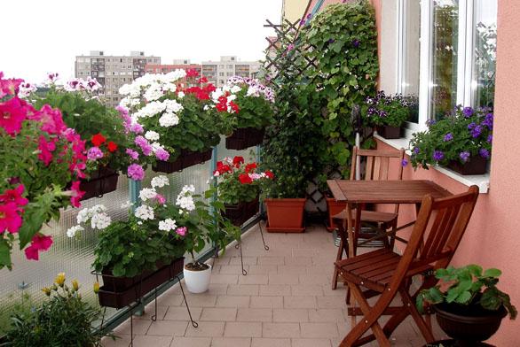 Léto na balkoně po celý rok