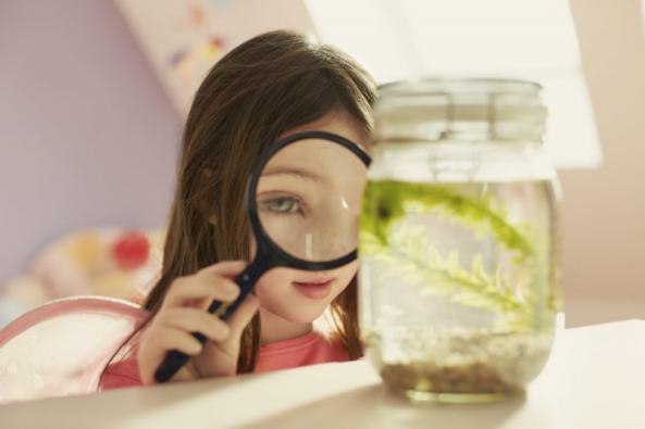 Denní světlo má významné antibakteriální účinky a zvyšuje schopnost koncentrace (foto: Velux).