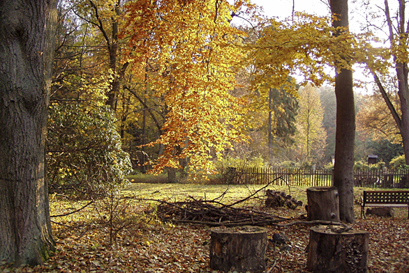 Čtvrtá zóna minimální péče se zvelké části stará sama osebe, je to příroda, kterou člověk vytváří akoriguje dle svých představ apožadavků, anemusí tam nic dělat, když se mu nechce.