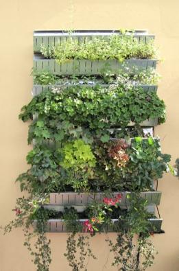 Vertikální uspořádání nazeď umístěných nádob srostlinami šikovně řeší problém nedostatku místa namalých balkonech.