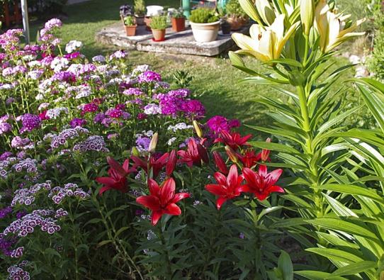 Do již existujícího členění byly zasazeny větší keře a mnoho květin z původní zahrady.