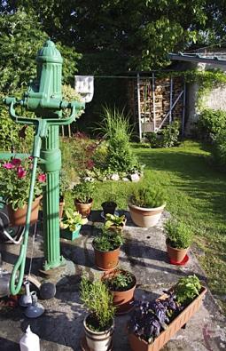 Betonovou desku pumpy oživují letničky, trvalky, bylinky i konifery v květináčích.