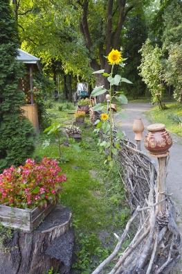 Vrby mají vsobě zvláštní nostalgické kouzlo anabízejí odpradávna imnohá praktická využití. Zpevňují břehy, lákají včely na jarní pastvu, jejich pruty slouží kvýrobě nejrůznějších nádob adekorací.