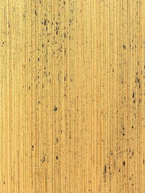 Cementová stěrková omítka vdekoru dřeva Wood (Viero) prostoupí interiér tichem lesa, design Polidori Barbera, www.3deco.cz