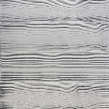 Dřevo otištěné vbetonu zachycuje pohledová cementová stěrka Betonimage (Ardex), která zvýrazňuje přirozenou barvu betonu, www.betonimage.cz