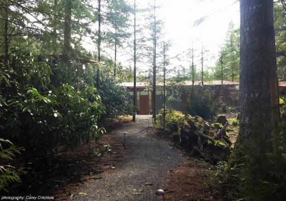 K domu se přichází lesem. AIA Housing Awards 2016: Cutler Anderson Architects - Newberg Residence
