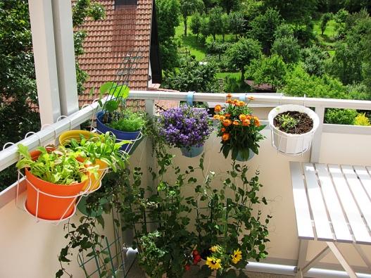 Barevnost sluší nejenom květinám, ale inádobám.