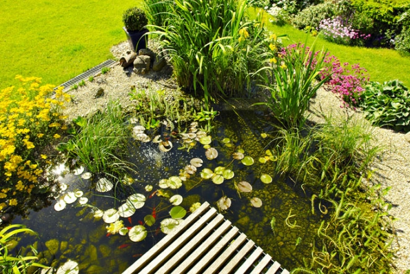 Pýchou majitelů je zahradní jezírko s lekníny, kosatci a další výsadbou vodních rostlin.