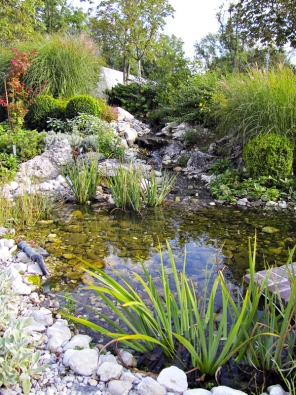 S citem vybudované jezírko napodobuje přírodní jezera a krásně doplňuje další výsadby v zahradě.