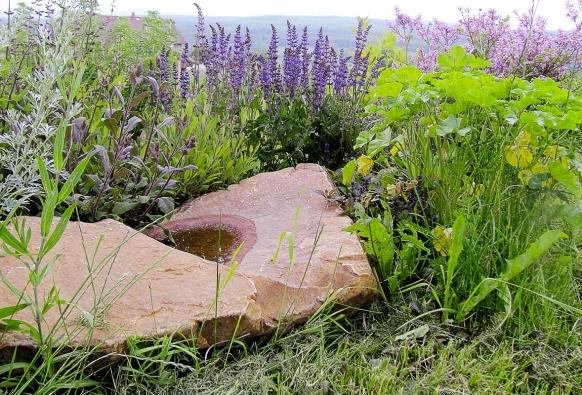 Do úplně malé zahrady nebo na balkon či terasu umístěte alespoň nádobu svodou, káď, kamenné korýtko nebo pítko pro ptáky. Pítka můžete koupit ihotová. Kámen vhodného tvaru doplněný rostlinami vypadá velice pěkně aimalá vodní plocha bude radostí vám iokolním živočichům.