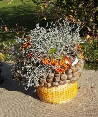 Podzimní plody jsou nádherným doplňkem nejrůznějších květinových aranžmá i suchých vazeb. Využijte zářivých barev a spousty možností, které se v této roční době nabízejí zdarma všude kolem.