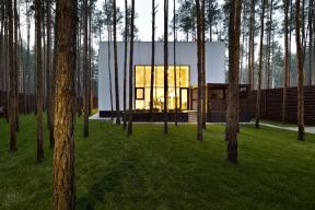 Vlesnaté oblasti poblíž Kyjeva prosvítá mezi tenkými kmeny jehličnanů silueta nenápadného šedého domu. Hlavním úkolem architektky bylo co nejvíce spojit život rodiny spřírodou.