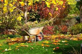 Každé roční období má svoji poetiku. Podzim azima vyvolávají nostalgii, zahrada již nehýří barevnými květy, ale přesto může být krásná. Vynikne jemná grafika nahých větví, tmavá zeleň jehličnanů iuschlá květenství trav. Přijměte pozvání na zahradu, která se chystá kzimnímu spánku.