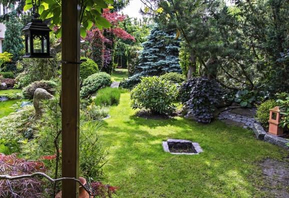 Při sázení stromů a keřů se majitel řídil pouze instinktem bez profesionálních znalostí v oblasti architektury a zahradnictví. Na počátku byla pouze touha mít svůj vlastní přírodní prostor.