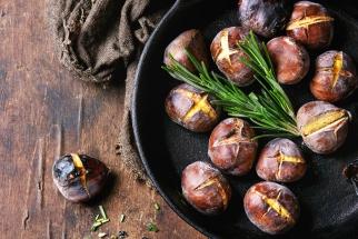 Většina lidí stále považuje ořechy, jedlé kaštany či mandle pouze za pochutinu, přitom odedávna jsou tyto plody také symbolem hojnosti a zásob na zimu. Mají významnou výživovou hodnotu i léčivou moc.