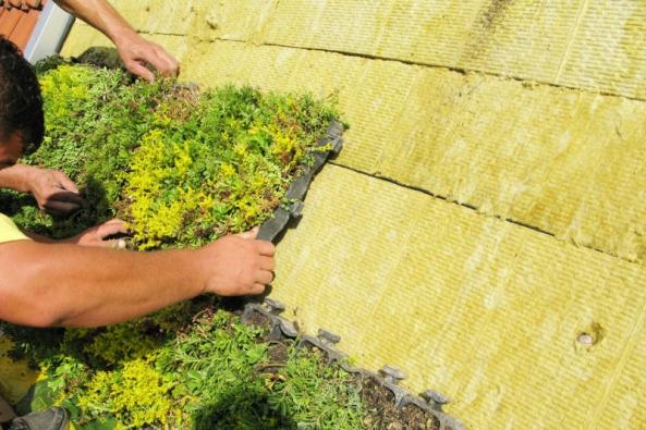 ISOVER vydal zcela novou publikaci Vegetační střechy, která pomůže s rozhodnutím při výběru vhodného řešení zelené střechy s minerální vlnou.