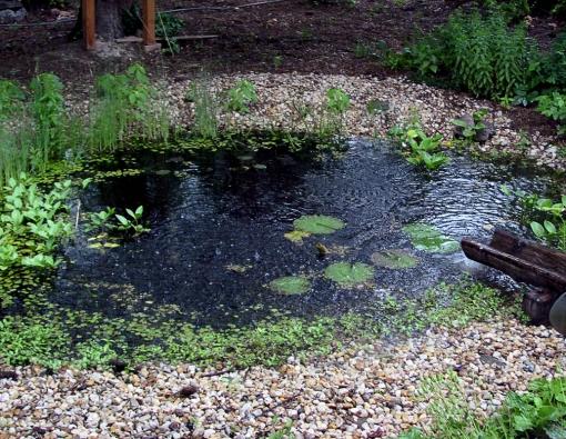 Voda přitékající do jezírka z roury by měla být vedena oklikou. Ideálním řešením je kaskádovitý potůček, kde voda protéká přes jednotlivé stupně nebo malé vodopády. K zachycení dešťové vody na větších a svažitých pozemcích se využívají speciální příkopy (svejly), pomohou v období přívalových dešťů omezit povrchový odtok.