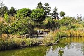 Do vlhčích podmínek se jezírko organicky zařadí a vypadá, jako by tam odjakživa patřilo. Voda má významný vliv na mikroklima v okolí, zvlhčuje vzduch a vodní plochy přes noc vydávají tepelnou energii, kterou akumulovaly přes den. V permakulturních zahradách se této vlastnosti často využívá a do okolí vodních ploch se s oblibou vysazují teplomilnější druhy rostlin.