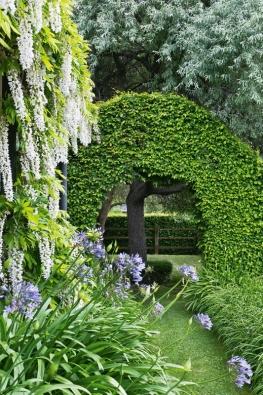 Vokrasné zahradě tvarované nízké plůtky podporují řád akoncept výsadby, naopak vmístech, která mají být pohledově uzavřená, se používají keře vysoké minimálně dva metry.