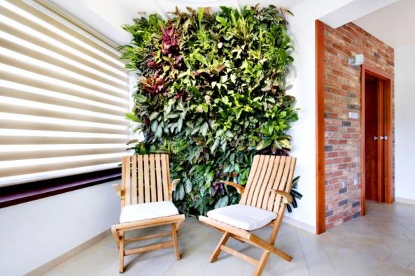 Vertikální zahrady mají kromě estetické funkce iefekt tepelné izolace, zlepšování klimatu odpařováním vody ichlazení vletních měsících. Proto jsou tak často využívány vodpočinkových místnostech domu.