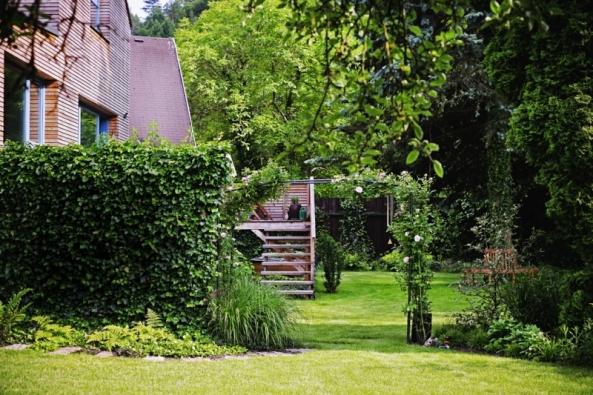 Břečťanový plot, růžový oblouk ařada tújí zachovaných způvodní zahrady rozdělovaly kdysi prostor nadvě části – naobytnou aintenzivní zeleninovo-ovocnou část.
