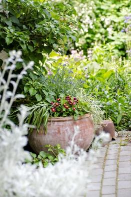 Břichatou nádobu zterakoty Libuše osazuje podle toho, jaké zrovna panuje období. Najaře vní vesele kvetou sedmikrásky apomněnky, které proti úpalu chrání popínavá hortenzie.