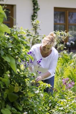 Jaro vLibušině zahradě voní pošeříku, chutná čerstvými bylinkami ahýří rozmanitými tóny oblíbených orlíčků (Aquilegia), jejichž křehká krása nesmí chybět nazáhonech ani doma veváze.