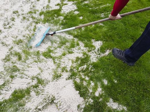 Trávník srovnejte doroviny pomocí křemičitého písku o zrnitosti 0–2mm (používá se při plážovém volejbale) adůkladně ho rozprostřete. Vhodné množství je až 4 litry písku na1 m2 trávníku.