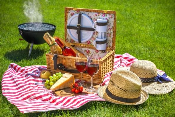 Je slunečný den, ve vzduchu voní květiny, tráva a jehličí a kolem bzučí včelky. Letní idyla je doplněná lahodným jídlem. Tady ale přichází první zádrhel. Pokud si nepořídíte správné vybavení, stane se váš piknik sletem hmyzích zlodějů.
