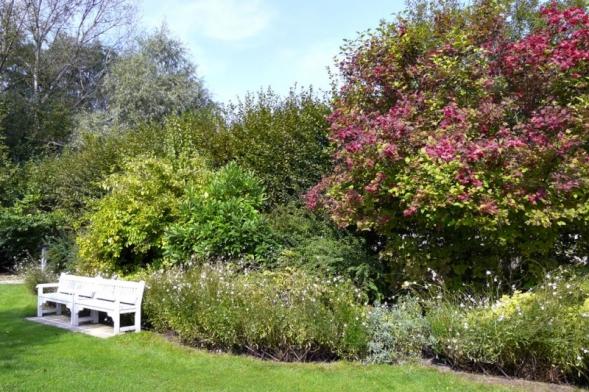Vsoučasné době jsou stále oblíbenější živé ploty zvolně rostlých dřevin. Svůj úkol splní hlavně vpřírodní zahradě