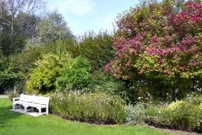 Vsoučasné době jsou stále oblíbenější živé ploty zvolně rostlých dřevin. Svůj úkol splní hlavně vpřírodní zahradě.