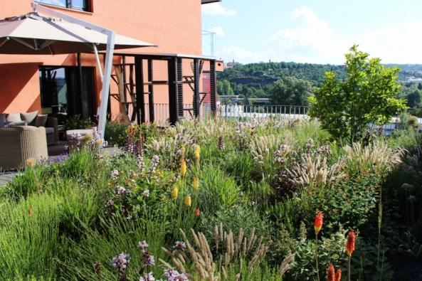Intenzivní střecha vPraze-Holešovicích. Vzhledem icharakterem lze takovou střechu přirovnat kokrasné zahradě se vším všudy. Mohou zde být trávníky, trvalky, keře istromy.