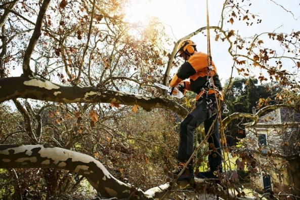 Rozsáhlejší zahradní úpravy je vhodné provádět společně srekonstrukcí domu, atak by neměl nastavbě chybět také arborista. Stavební činnost totiž výrazně narušuje dané prostředí amůže při ní dojít keznačnému poškození dřevin. Proto je důležité před zahájením stavebních prací zvážit potřebná opatření, která jsou nezbytná kochraně stromů aploch pro nové výsadby.